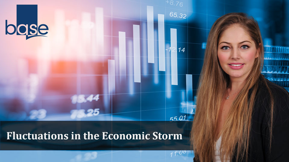 Fluctuations in the Economic Storm